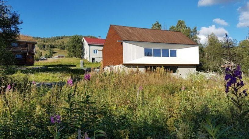 to hus og blomstereng.foto