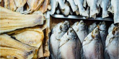 Fisk og tørrfisk.foto